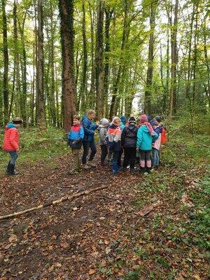 Fotoalbum Waldtag Klasse 3