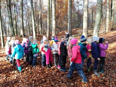 Fotoalbum Waldtag Klasse 2