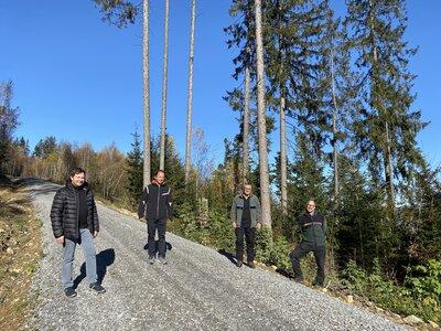 Fotoalbum Zeller Waldweg