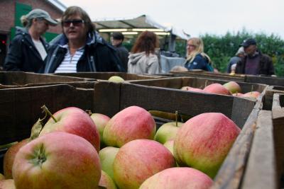 Fotoalbum Holsteiner Apfeltage - Apfelquetschertag in Seester