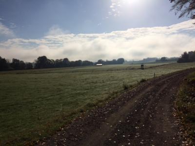 Fotoalbum Mountainbiken Rund um Marburg im Herbst bei Top Wetter