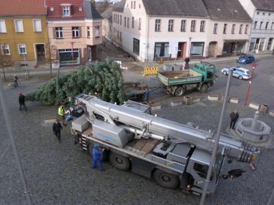 Fotoalbum traditionelles Aufstellen des Weihnachtsbaumes vor dem Rathaus