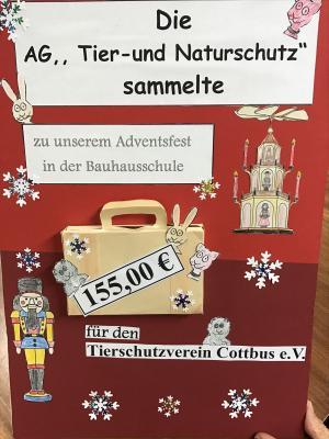 Fotoalbum Spendenübergabe durch die Tierschutz AG der Bauhausschule an das Tierheim in Cottbus