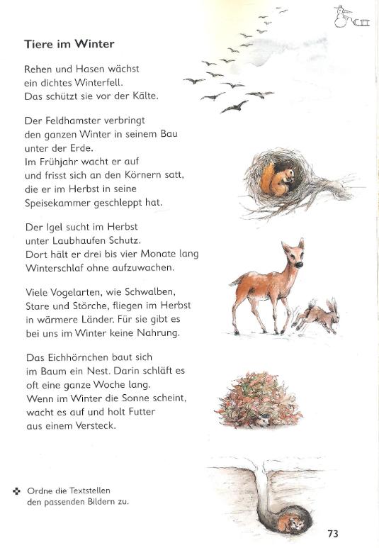 arbeitsblatt vorschule 187 v246gel im winter grundschule 1