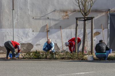 """Fotoalbum Aktionstag """"Miteinander, Füreinander, ein Dorf für Jung und Alt"""""""