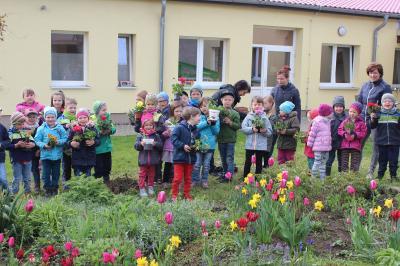 Fotoalbum Impressionen Blumenfest