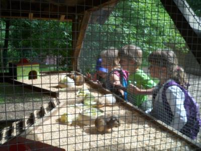 Fotoalbum Aus dem Naturkinderhaus