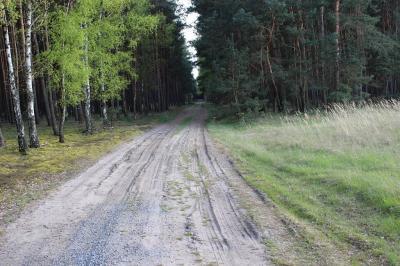 Fotoalbum Waldwegeausbau durch die Forstbetriebsgemeinschaft Welsickendorf