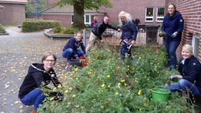 Fotoalbum Beetpflege in Wiesede