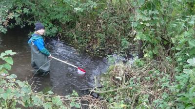 Fotoalbum Wassercamp: Die biologische Untersuchung