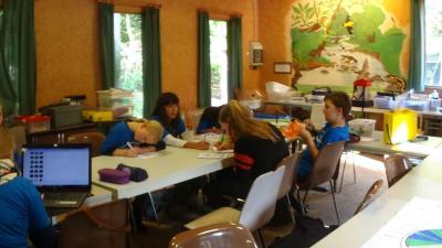 Fotoalbum Wassercamp: Dokumentieren und Bewerten der Ergebnisse