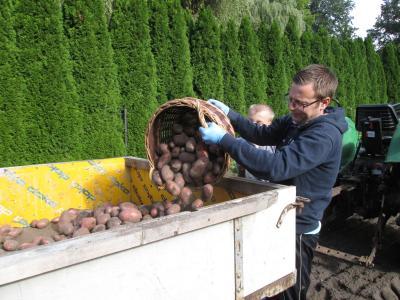 Fotoalbum Kartoffelernte !