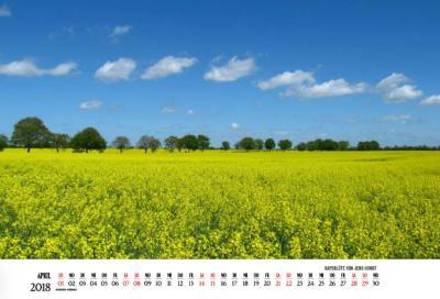Fotoalbum Jahreskalender