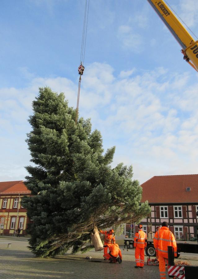 Wann Weihnachtsbaum Aufstellen.Gemeinde Wusterhausen Dosse Weihnachtsbaum Aufstellen 2017