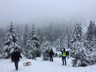 Fotoalbum Winterwanderung zum Brocken
