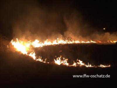 Fotoalbum Flächenbrand Oschatz