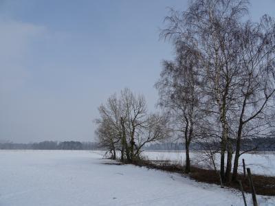 Fotoalbum Winterimpressionen mit und ohne Schnee in Uebigau-Wahrenbrück
