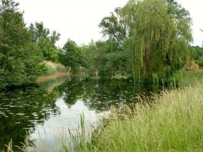 Fotoalbum Friedrich-Wilhelm-Kanal