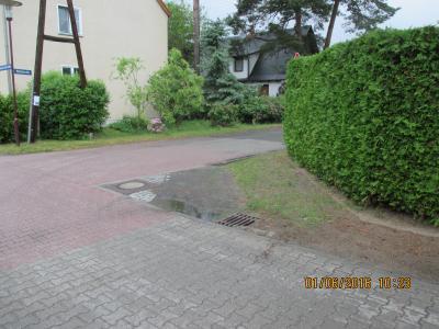 Fotoalbum Lwf Waldstraße