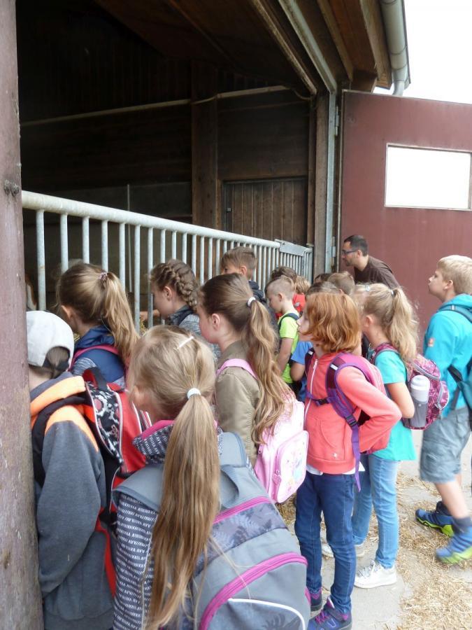 Grundschule Altenkunstadt - Auf dem Bauernhof