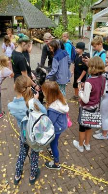 Fotoalbum Zooschule2018