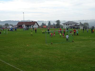 Fotoalbum F-Jugendspieltag und Bambini-Spiel auf dem Sportplatz in Kleinschönach