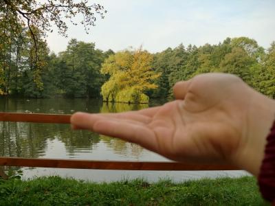 Fotoalbum Wir fangen den Herbst ein