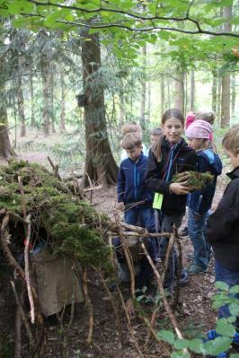 Fotoalbum Die Waldwoche