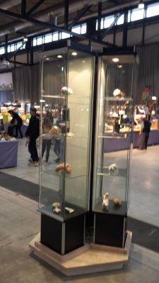 Fotoalbum 41. Internationale Mineralen- und Fossilientage