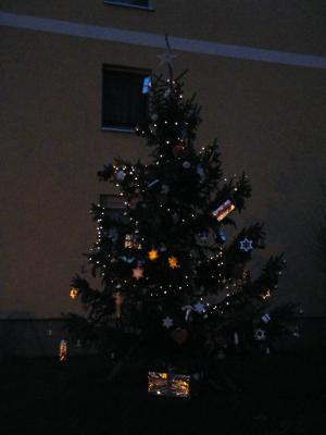 Fotoalbum Weihnachtsbaumaktion mit Mikado e.V. in Nauen