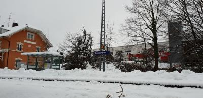 Fotoalbum Baum auf Gleisen 06.01.2019