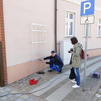 Fotoalbum Pflanzaktion Innenstadtrosen
