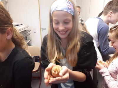 Fotoalbum Nachwuchs in der Schule - Bioprojekt