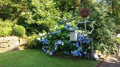 Fotoalbum Die Gärten von Uslar