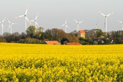 Fotoalbum Fotos aus Holzhausen und Umgebung