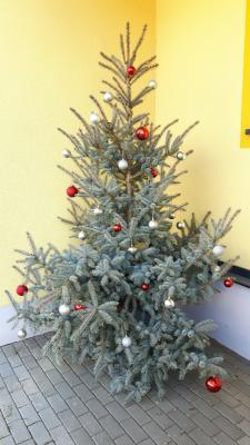 Fotoalbum Weihnachtszeit