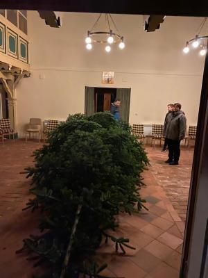 Fotoalbum Weihnachtsbaum aufstellen und schmücken