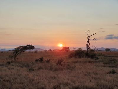 Fotoalbum Tansania-Projekt 2019