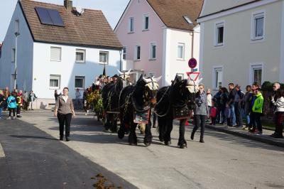 Fotoalbum Leonhardiritt 2019 in Weißenhorn
