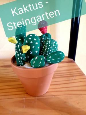 Fotoalbum Steingartenkaktus