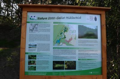 Fotoalbum Sommer im Naturschutzgebiet Mühlenteich