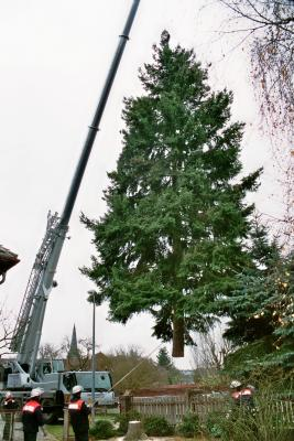 Fotoalbum Cottbuser Weihnachtsbaum aus Krieschow