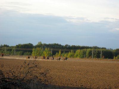 Foto des Albums: Herbstausfahrt 2006 (19.10.2006)