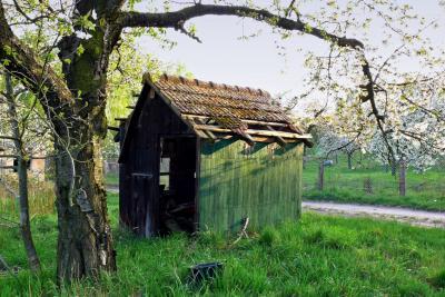Fotoalbum Fotowettbewerb 800 Jahre Hohenleipisch