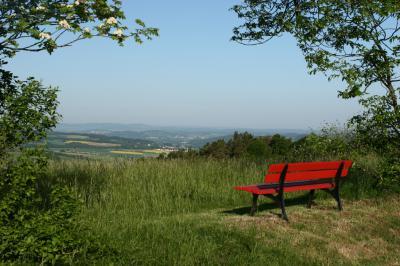 Fotoalbum Bunte Eindrücke von der Natur in Weißenbrunn