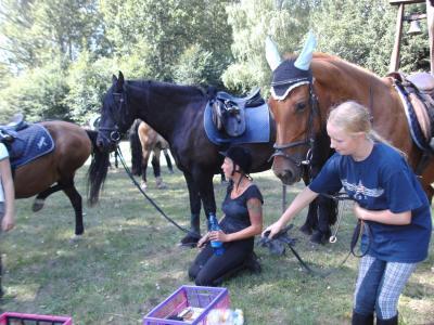 Foto des Albums: Ferienabschlussritt (21.08.2010)