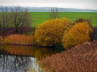 Fotoalbum Herbst an unseren Angelgewässer