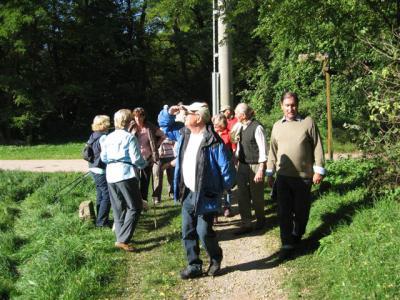 """Foto des Albums: Herbstwanderung nach Ramsthal zum """"Gasthof Wahler"""" (09.10.2010)"""