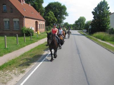 Foto des Albums: 2 - Tagesritt nach Damme (11.06.2011)