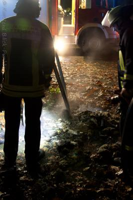 Foto des Albums: Mülltonnenbrände (03.10.2011)